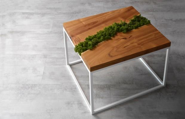 Stolik kawowy z mchem_Malita Just Wood
