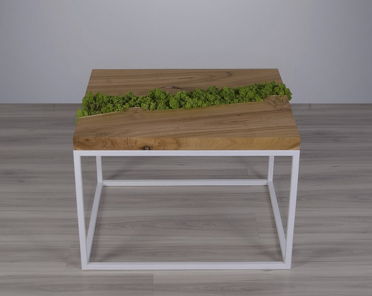 stolik-kawowy-z-mchem-malita-just-wood